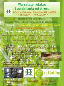u-haliny-warsztaty-czysty